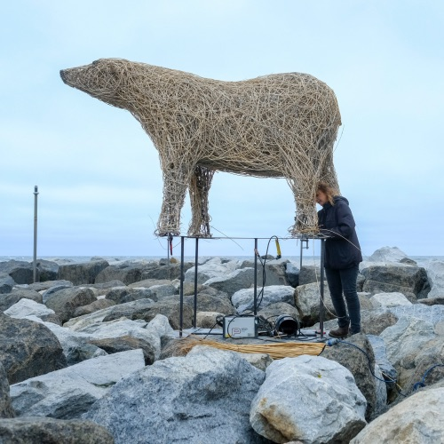 Staithes Polar Bear Willow Sculpture